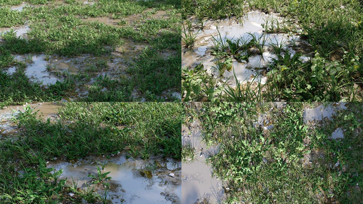 Cajuns_Grass_Pack_V2_big_puddles_preview