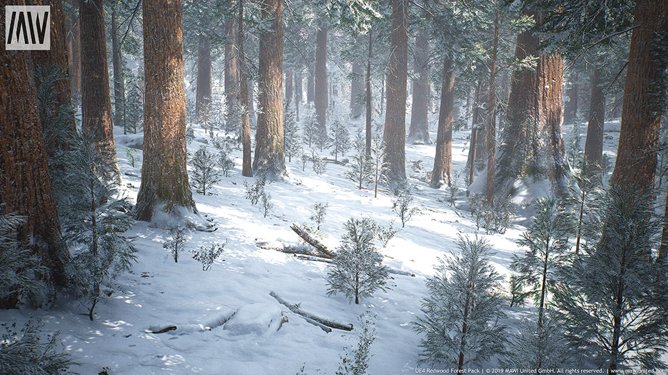 Agancg_UE4_Redwood-Forest-Collection02