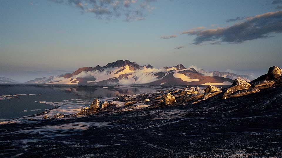 Agancg_UE4_Brushify-Arctic-Pack