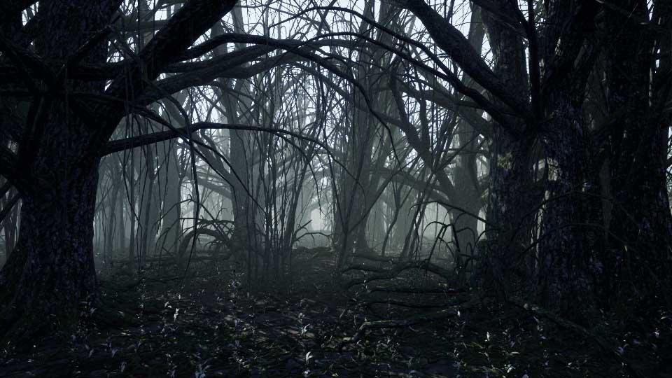 Agancg_UE4_Dark-Forest